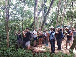 Tirimbina biological Reserve