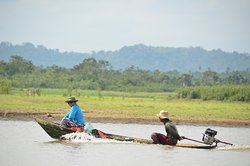 Amazonian floodplain