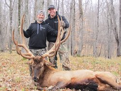 Trophy bull elk hunting in northern Wisconsin!