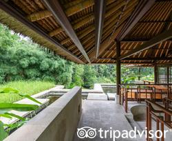 The One Bedroom Villa at the Four Seasons Resort Bali at Sayan