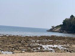 Viele Steine bei Ebbe sichtbar.