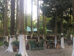 Tea Lover's Getaway and Awesome Place to spend time with serene nature