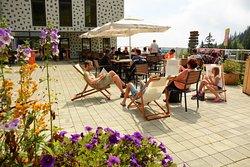 Restaurant Medvedjak