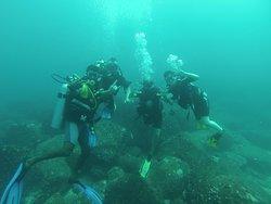 Paradise Dive Center