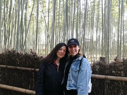 Kyoto Bike Tour - The Bamboo Forest & Arashiyama