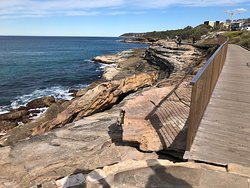 Boardwalk starting from south Curl Curl