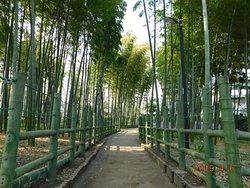 すずめのお宿緑地公園 景観一例