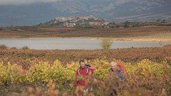 Rutas de senderismo y turismo en Rioja Alavesa