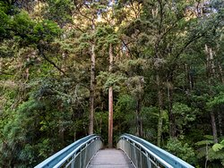 Bridge on the way to the waterfall