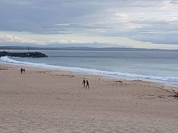 View from Beach Bums Cafe at Forster