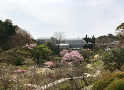 The Kochi Prefectural Makino Botanical Garden