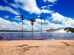 Canaima Tours