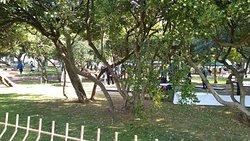 Clube de Minigolfe do Porto
