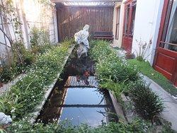 Private-ish Koi fish pond