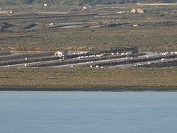 Parador de Ayamonte (Huelva). Vistas desde el Parador. Costa de Portugal. Rio Guadiana.