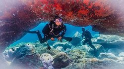 Let the Spirit of Adventure Guide You! Espiritu de Buceo Padi 5 Star Diving Center S-24642, is the best choice in scuba diving when it comes to safety, equipment and service. Our team is 100% committed to deliver the best quality diving experience.