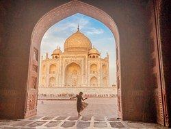 India Private Tour Driver