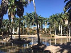 Jardín Botánico Benjamin Francis Johnston