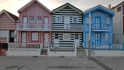 Casas às Riscas da Costa Nova/ Striped Houses from Costa Nova (Best of Aveiro Tour)