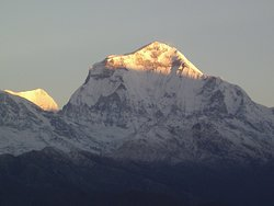 mt. Dhaulagiri view from poon hill Trekking