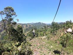 Yala NP, Ella, Adams Peak, Teefabrik Tea Bush, Kandy und Dambulla