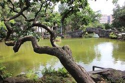 Wasserteil des Parks