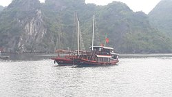 Ocean Junk Cruises