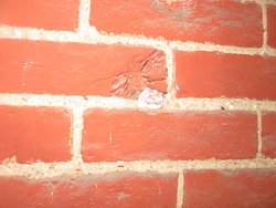 An original bullet hole from during the battles. The building we stayed in was where the sharpshooters took cover.