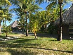 Mini golf and Polynesian Buffet