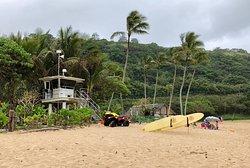 Kevo's Beach Bus