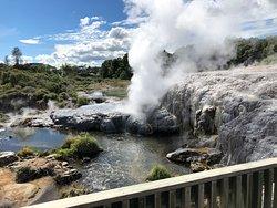 Another view of Papakura geyser erupting