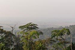 Lowland woody savanna landscape north of the ridge