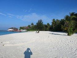 Same beach - not very crowded!