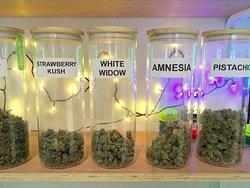 25 strains of best CBD buds1