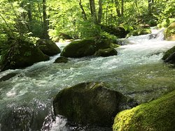 Oirase Mountain Stream