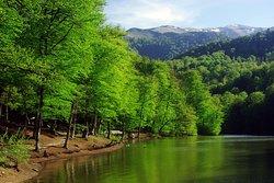 Lake Parz