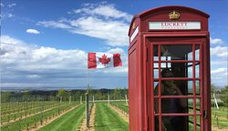 cool telephone booth at the winery