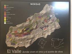 Map of vineyards