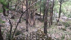 Jabarkhet Wildlife Reserve
