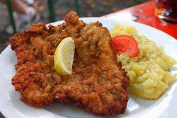 Chicken Schnitzel, Pork Schnitzel .... they are all good!