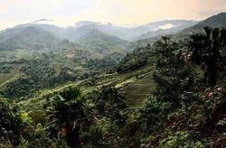 Rice Terraces in Ha Giang