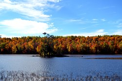 Gorgeous fall colors around the lake.