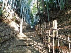 Hiyodori Hill