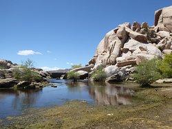 Blik op de dam vanaf de oever van het meertje