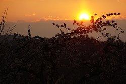 Sonnenuntergang über dem Ölberg. Wunderschön und romantisch!