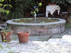 Aves de la región comían mansamente alrededor de la fuente en un lugar que irradia paz.