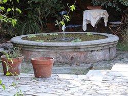 Fuente en medio del jardín. Varios zorzales comían a su alrededor.