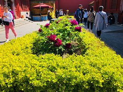 Beijing private tours by Sunflower Tours. China tour guide Sunflower Li is the best!