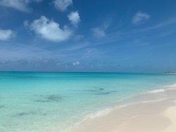 Bimini el paraíso existe,