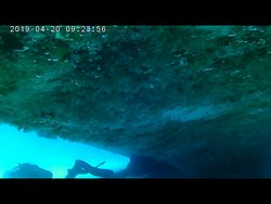 Gliding under the stern of a wreck